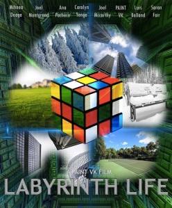 Labyrinth Life